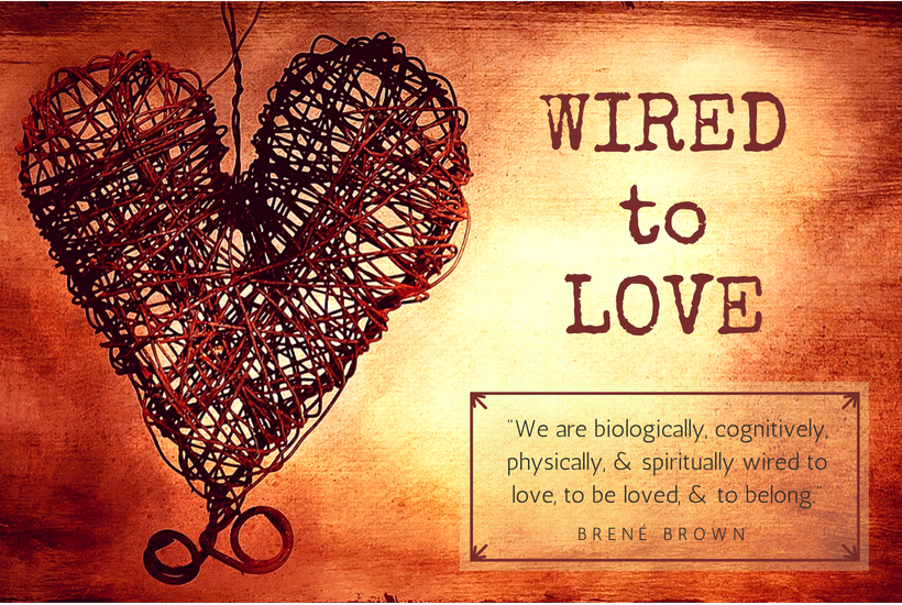 We are all wired to love. So why don't we?