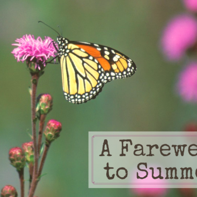 A Farewell to Summer