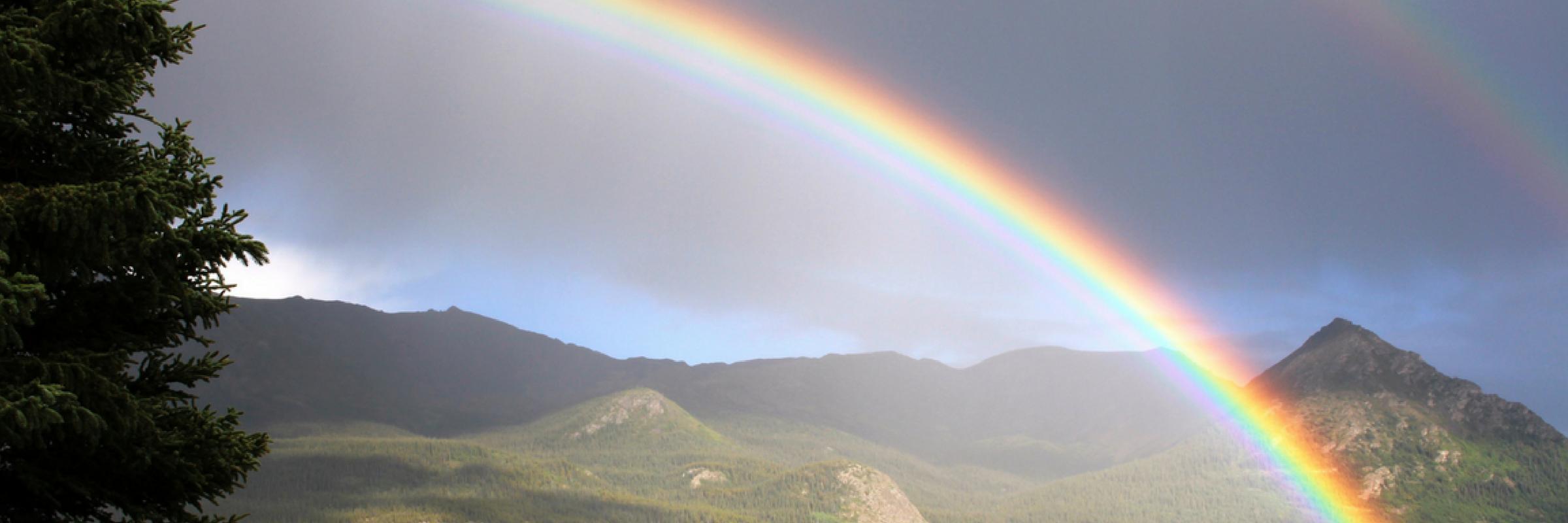Rainbow Slider Image